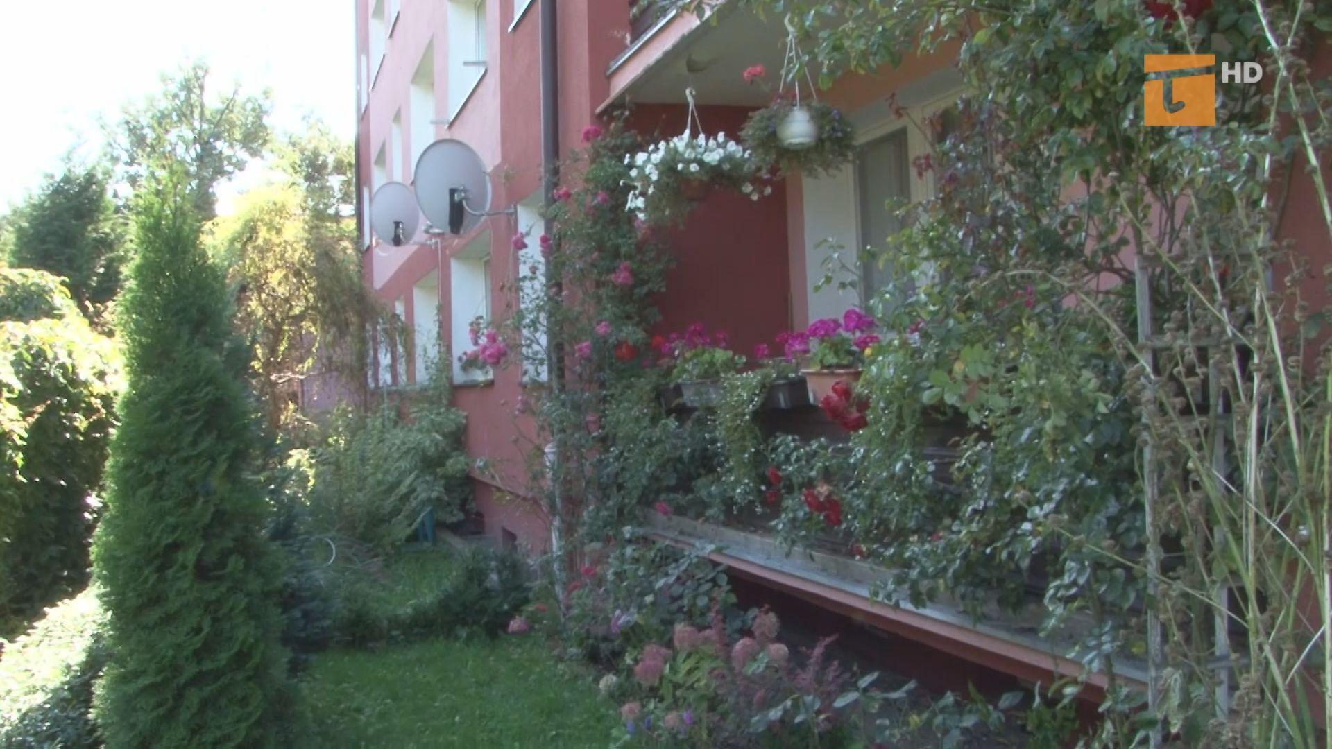 Rozpoczęła się kolejna edycja miejskiego konkursu związana z upiększaniem balkonów i otoczenia