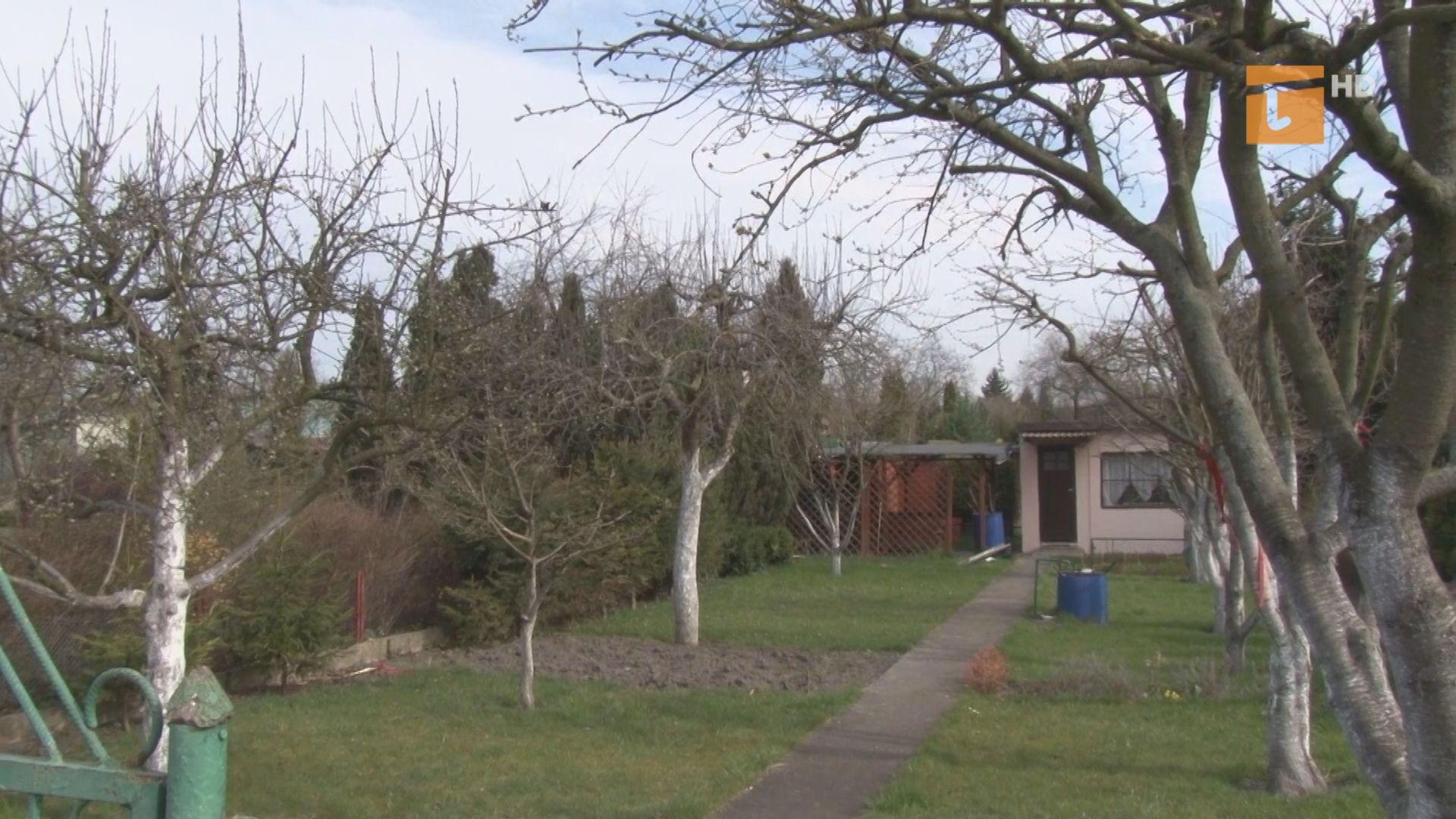 Rodzinne ogrody działkowe są dostępne dla nielicznych mieszkańców Tczewa