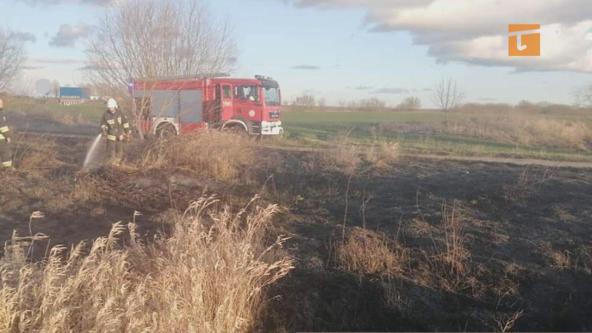 Sezon wypalania traw jest zabroniony – apelują strażacy