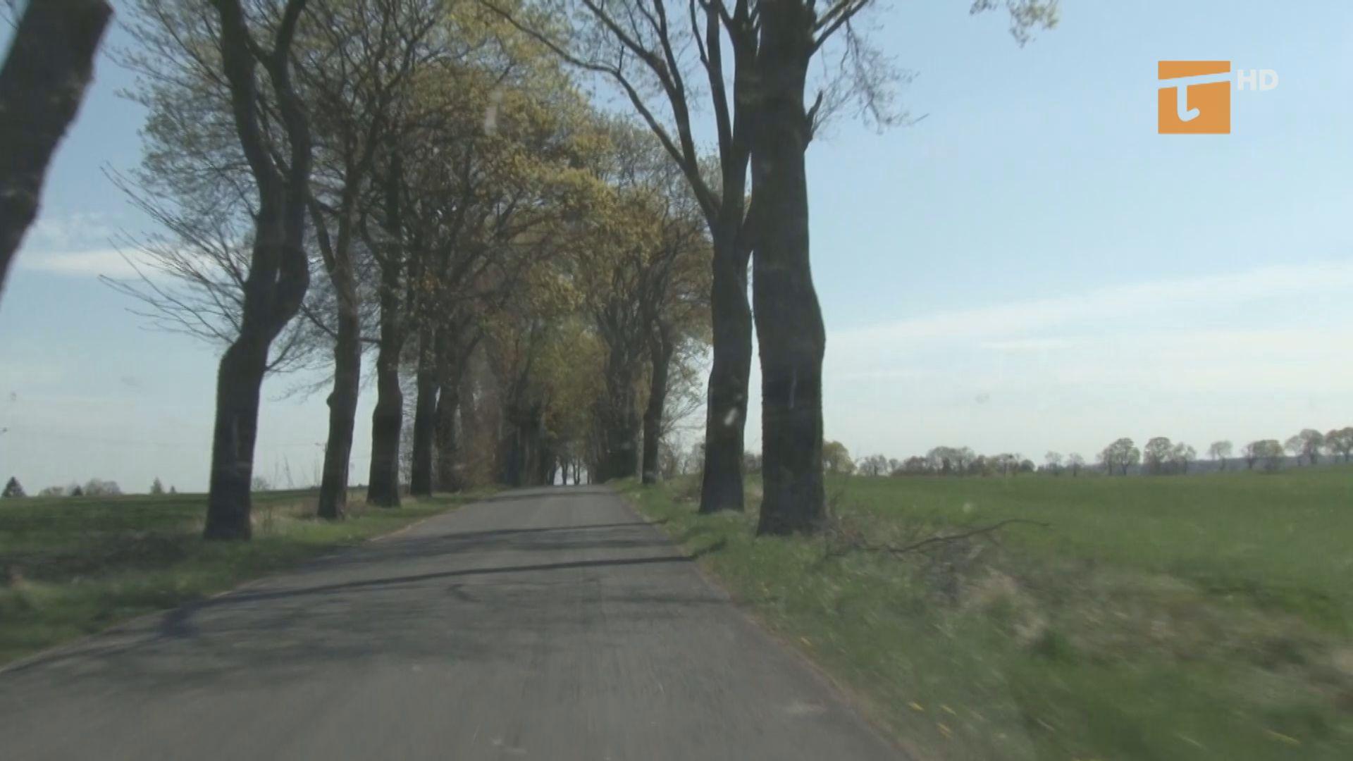 drogi powiatowe