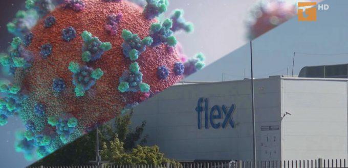 W firmie Flex wykryto koronawirusa