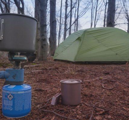 Las w Bukowcu otwarty dla surwiwalowców
