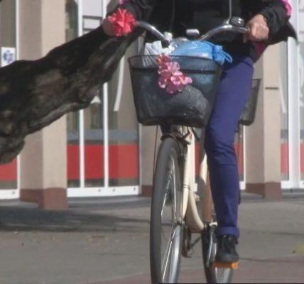 Tczewianie chętnie jeżdżą rowerem do pracy