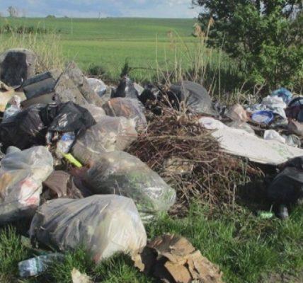 Czy kamery odstraszą śmiecących działkowców